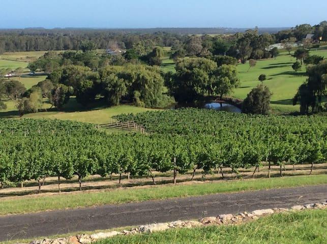 Vineyard Vista - Coolangatta