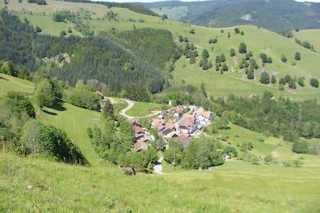 Gästezimmer Belchen Schwarzwald Traumaussicht