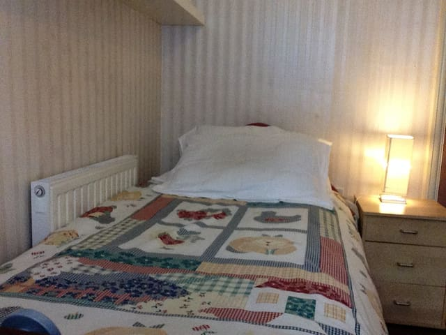 Small room within 30 minutes from Central London. - London - House