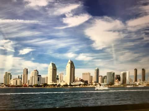 San Diego Marriott Club Pulse