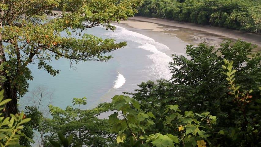 Trinidad Pacific Island, Isla Parida, Panama - Chiriqui - Wyspa