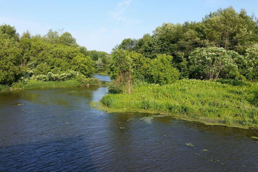 Creek great for kayaking