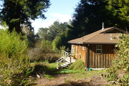 Sunny Mendocino cottage w/Redwoods - 一軒家