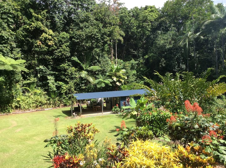 Holiday Cabin in the Daintree Rainforest