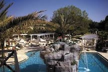 Star Island Pool