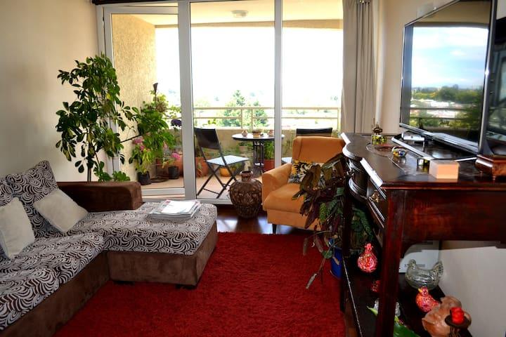 Habitación confortable wifi baño privado central. - Temuco - Apartment