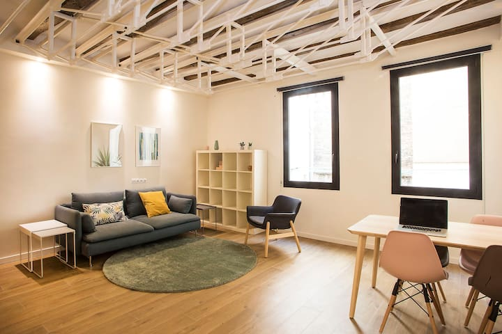 Newly renovated apartment in the historic centre