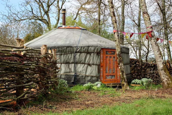 Yurt & traditional sauna in nature - Saint-Maurice-sur-Aveyron - Yurt