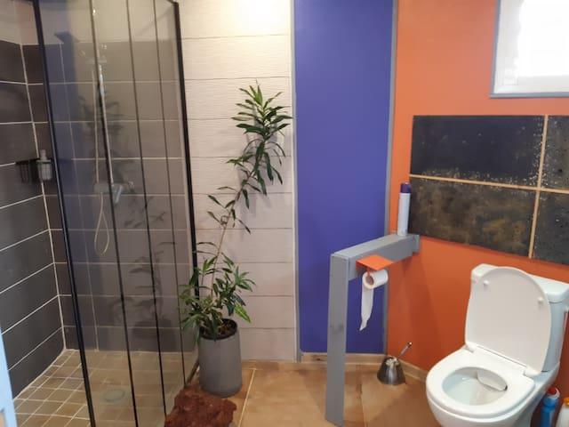 Douche italienne et toilettes design neuf