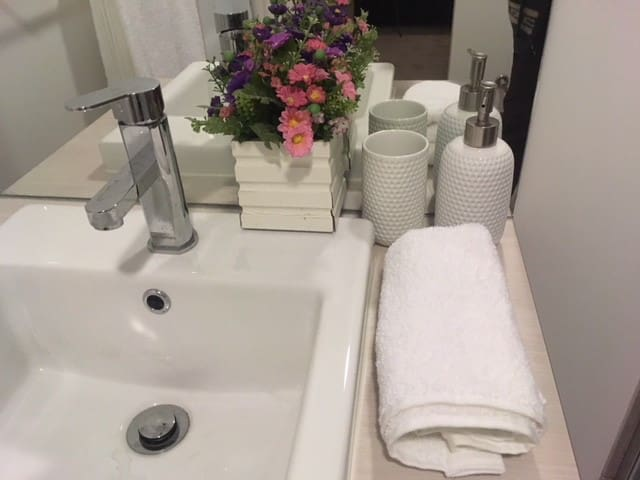 Master bath room with toilet