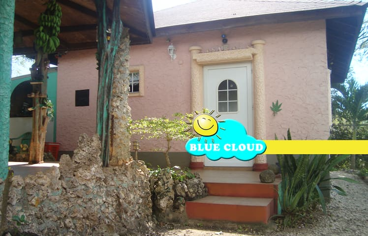 Blue Cloud Cottage - Negril - House