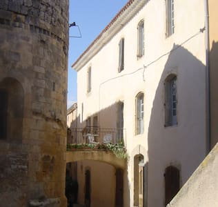Entire 3 floor historical 16th century house - Townhouse