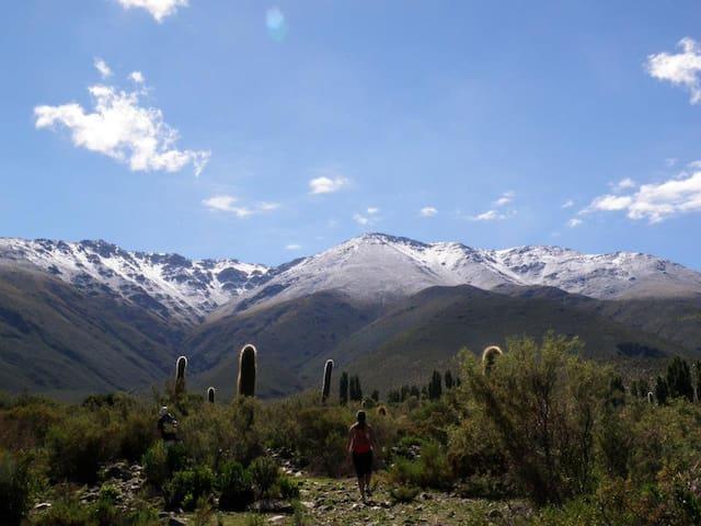 Chaupiñán - Camping de montaña