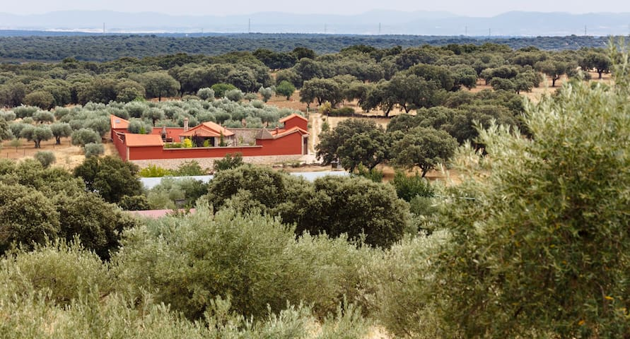 Complejo Rural atípico de lujo (6 Pax) Sur Gredos
