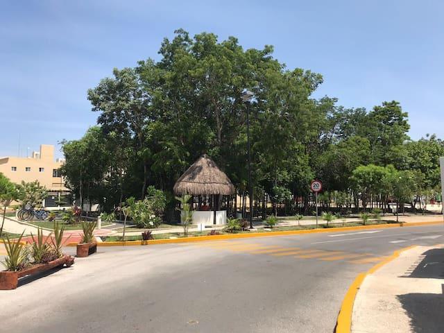 Casa Playa Del Carmen