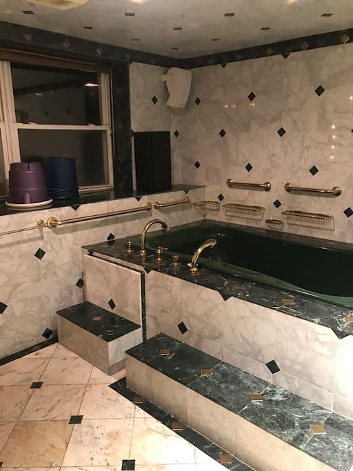 Jacuzzi hot tub/ bath tub