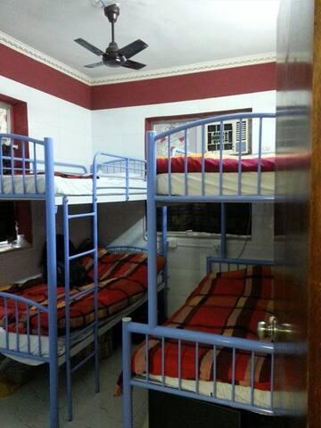 Bunk Bed Dormitory (Kamal Traveller)