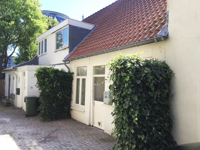 Leiden,groundfloor city appartment  with 2 bikes.