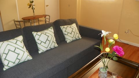 Want an entire 1BR apartment in a great location??
