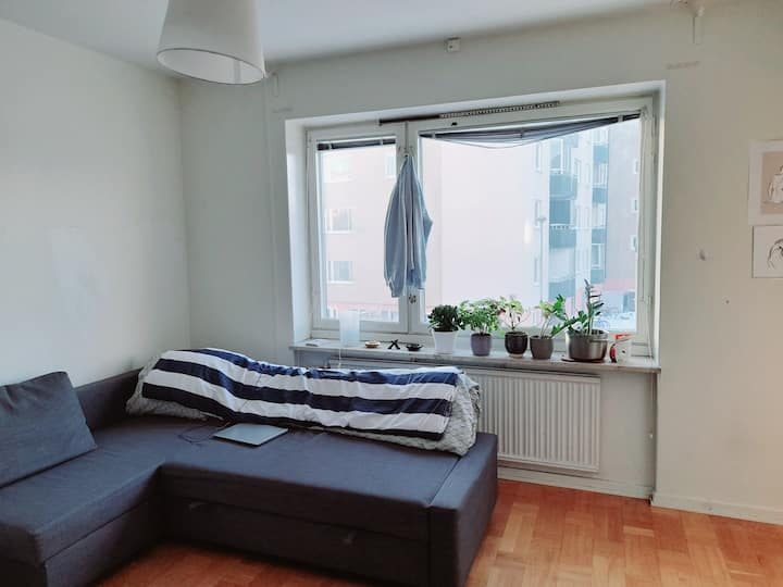 1 room apartament in Stockholm 15m to central