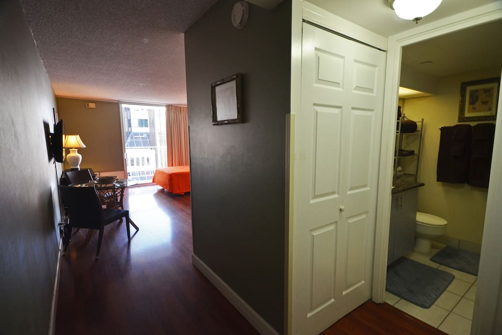 View from the entrance. Bathroom and closet on the right.