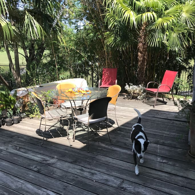 Outdoor dining area for guests.  Sadie is hanging out in the main house and may be around to say hello if she happens to be outside.