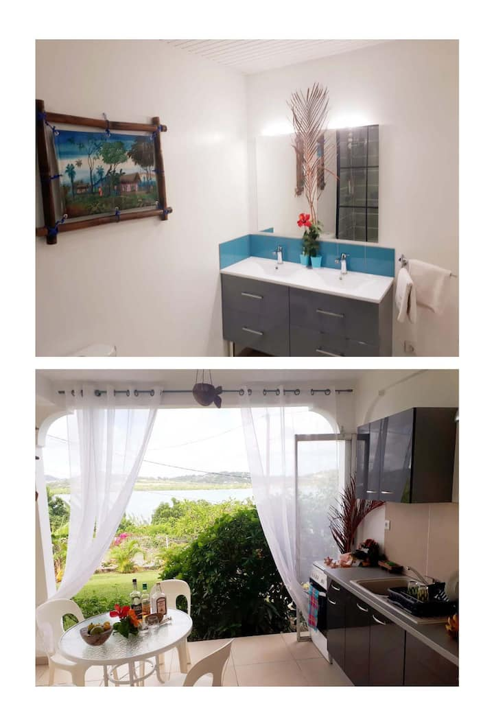 Joli appartement style Créole