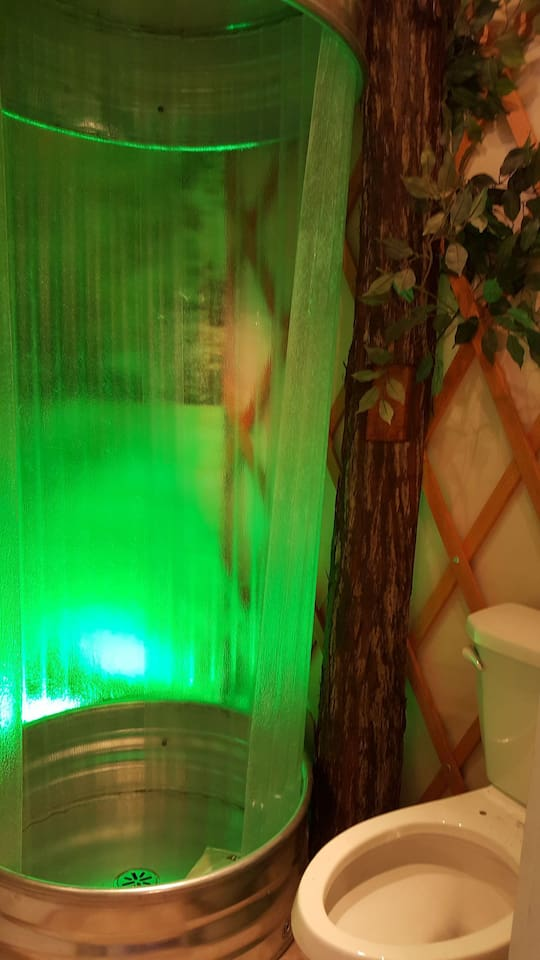 Shower with LED mood lighting the tree to the right is actually the shower control valve