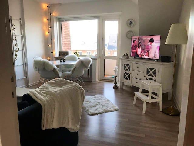 Charming 62 m2 apartment