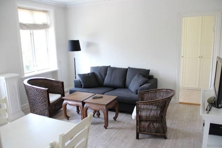Stylish Scandinavian Apartment and Area