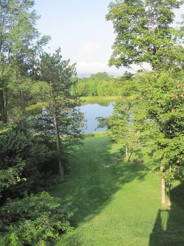 Hidden Pond Guest House - Hamilton - Vendégház