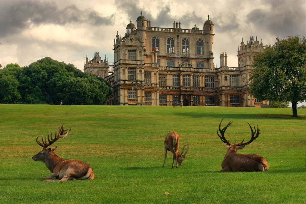 Wollaton park (also featured in Batman movie )