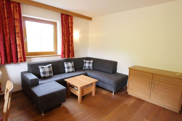Cozy Apartment in Mittersill near Ski Area