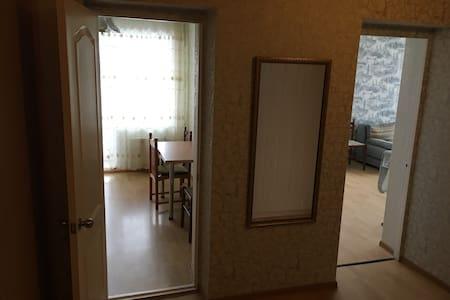 Однокомнатная в центре города Singleroom apartment - Krasnoyarsk