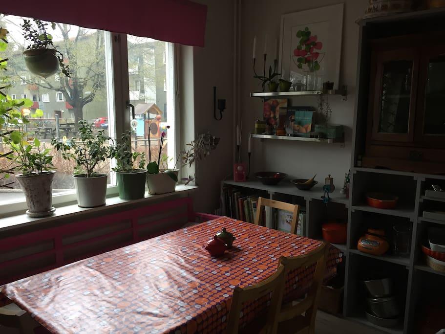 Kök med utsikt mot park