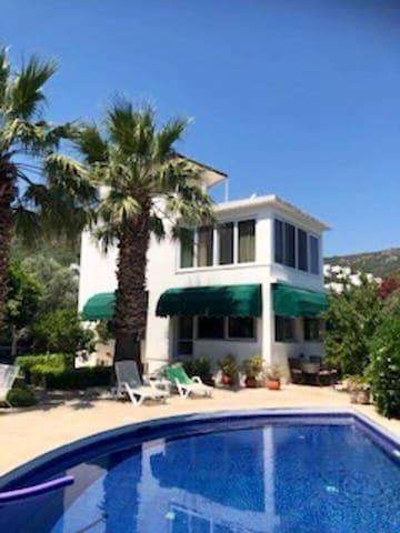 Mediterranean Villa in Fruitful Garden