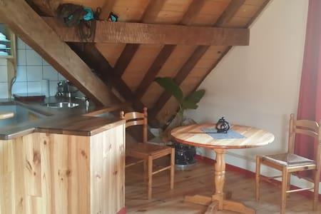 Studio de charme 40m2, tout confort, écologique - Bagnères-de-Bigorre