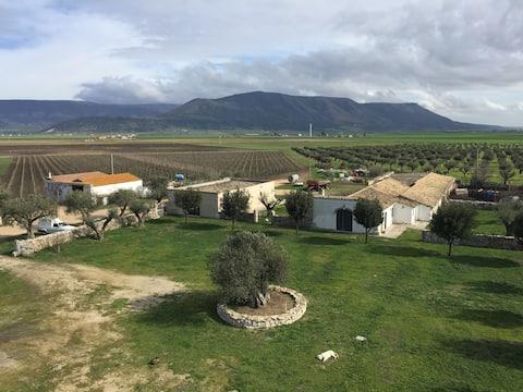 Ville in Azienda Agricola