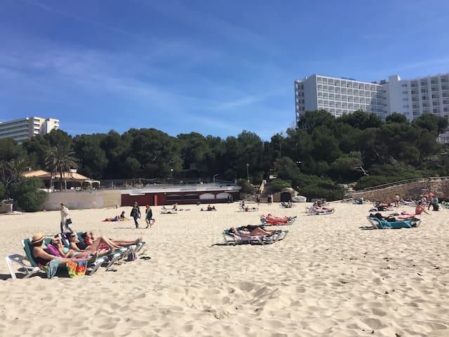 Estudió en urbanización con piscina - Cales de Mallorca - Apartament