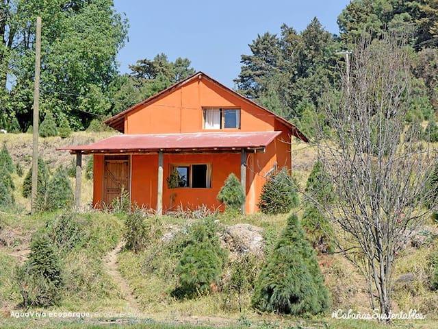 Cabaña Ecológica para 12 personas