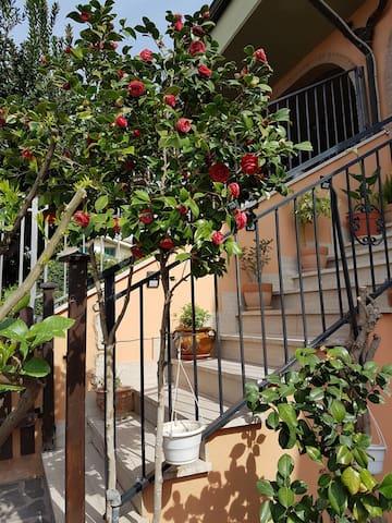 B&B Vista su Roma
