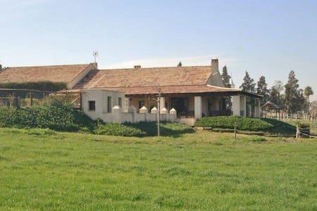 Finca Almonazar. Jardin y piscina junto a Sevilla - Seville