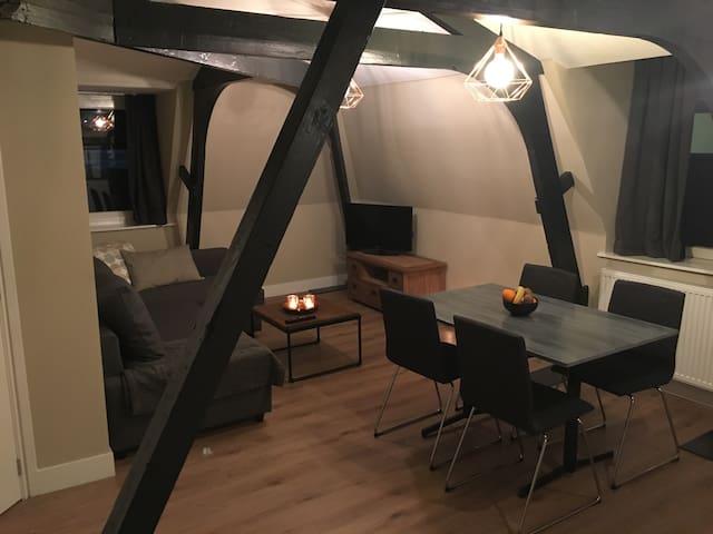 Argentina apartments - Hilversum - Apartmen