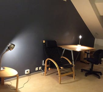 New Big Confortatble Studio Just for U - Norrtälje - House