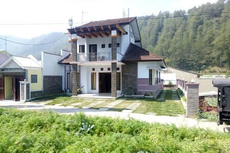 Villa neapolitan