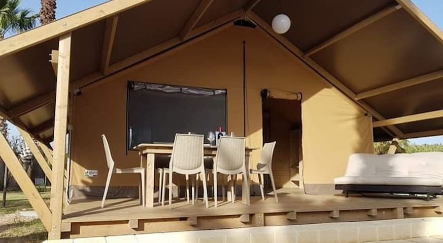 Tenda Safari Suite 1