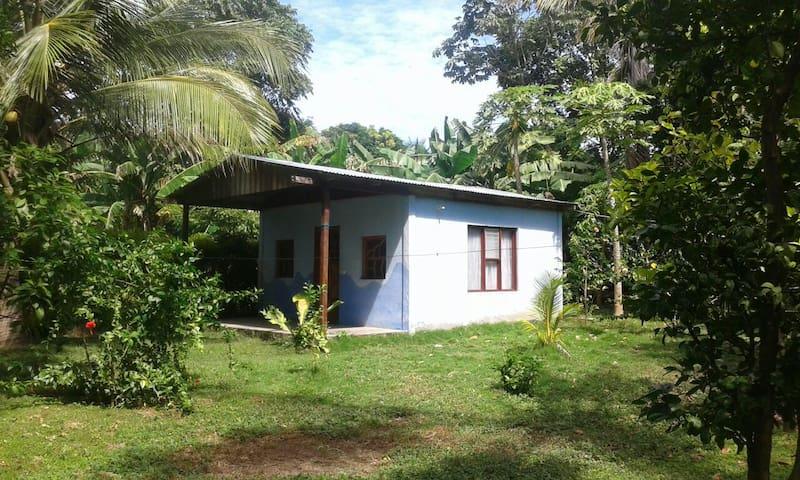 Beach House in Ometepe #2