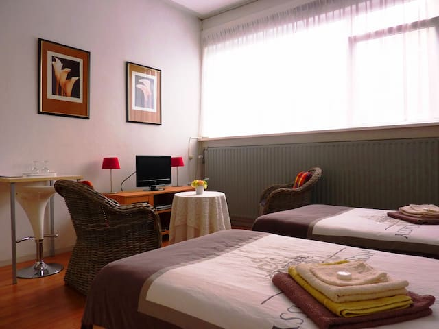 Your room has hotelbed, wifi, k1 - Leeuwarden - Bed & Breakfast