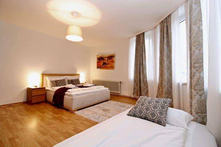 1-Bedroom Apartment Heiligenstadt