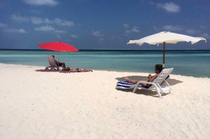 Maldives Apex Inn (gulhi island)